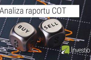 analiza-raportu-cot